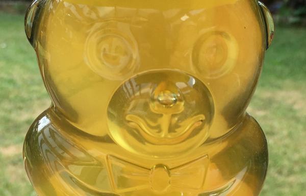 Bio Honig 385g im Bärchen Glas -ausverkauft-